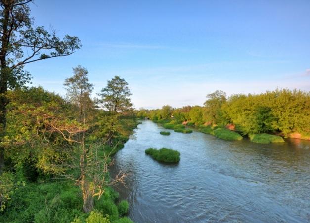Rzeka Bzura w Sochaczewie.